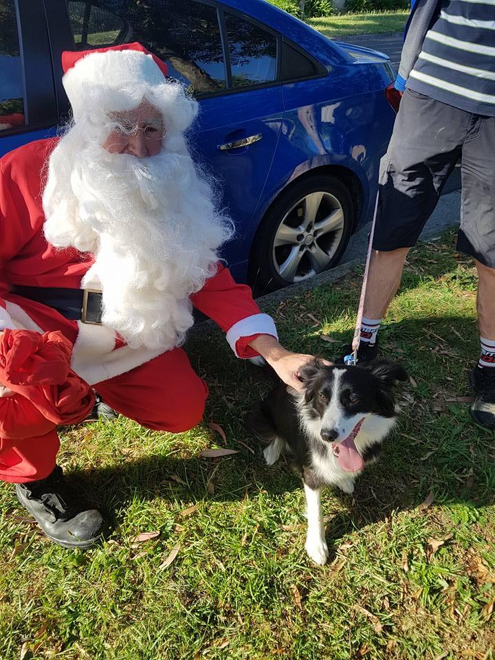 Santa Run 2017 (6)